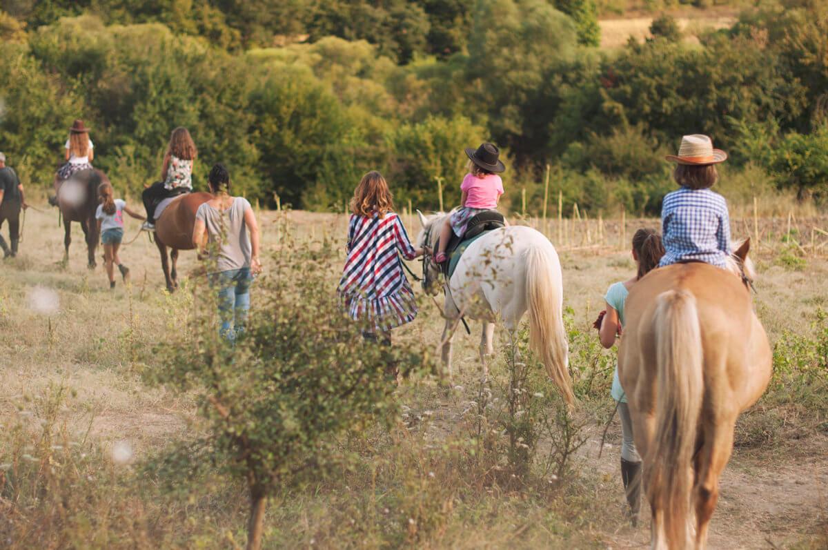 Заредете се с енергия с конна езда